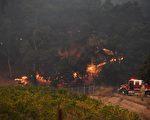 消防員在撲救索諾瑪縣葡萄園附近的野火。(ROBYN BECK/AFP)