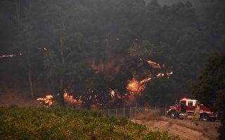 加州史上最致命野火 增至36死 滅火有進展