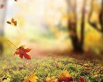 秋季陽氣漸收,是人體出現陽消陰長的過渡時期,因此秋天養生,凡精神情志、飲食起居皆以養收為原則。 (Fotolia)