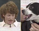 葛林认为狗狗麦克西已经死了,所以就埋了它,没想到第二天听到了熟悉的抓门声。(视频截图/大纪元合成)
