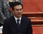 中共新一届中央委员及中纪委委员名单出炉,杨晶不在其中。(GREG BAKER/AFP/Getty Images)