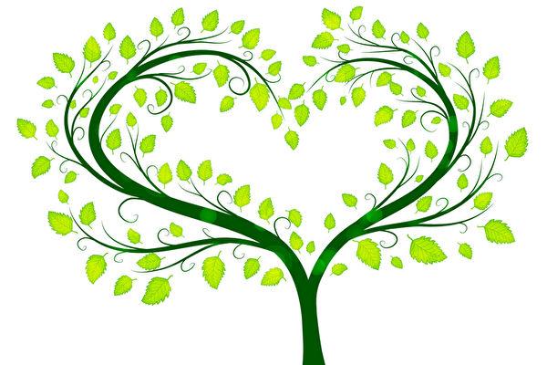 綠色的愛樹。(fotolia)