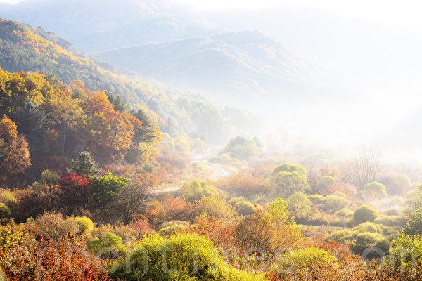 """韩国江原道仁济郡南面甲屯里山区的""""秘密庭园""""小风景区。图为早上雾气使""""秘密庭园""""变的像一幅水彩画一样安恬而幽静。(全景林/大纪元)"""