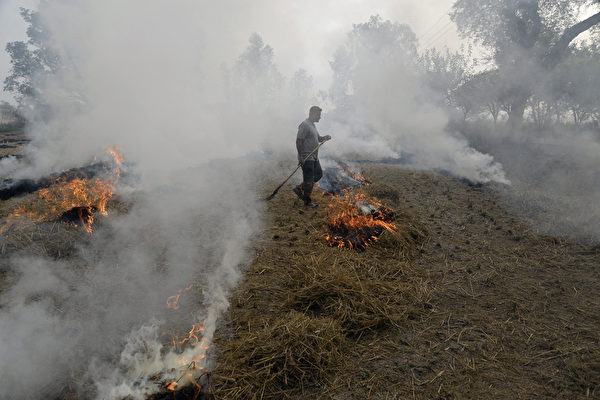 An Indian farmer burns paddy stubble in a field on the outskirts of Jalandhar in the northern state of Punjab on November 10, 2017. Northern India has reeled under dense smog that has disrupted air and railway services and forced residents to stay indoors or wear protection when they venture outside. / AFP PHOTO / SHAMMI MEHRA        (Photo credit should read SHAMMI MEHRA/AFP/Getty Images)