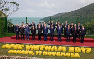 APEC經濟領袖會議11日在越南峴港進行大合照,APEC領袖代表宋楚瑜(後排右1)站在紐西蘭總理阿爾登旁邊。中國國家主席習近平(前排左5)站在越南國家主席陳大光右邊,美國總統川普在陳大光後方(後排右5)。(APEC代表團提供/中央社)