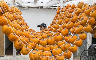 徐家果园的柿饼晾晒场。(曹景哲/大纪元)