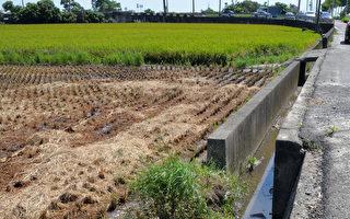 農水路所有權歸屬  雲林議員籲還地於農