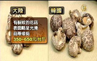 2810公斤大陆菇充当韩国菇 台检调逮2人