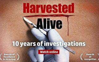 电影《活摘‧十年调查》在官网http://harvestedalive.com可免费观看(官方提供)