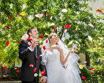 Novotel Sydney Norwest酒店室外花园婚礼(商家提供)