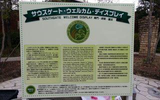 日本砺波市郁金香公园 文雅国小植郁金香