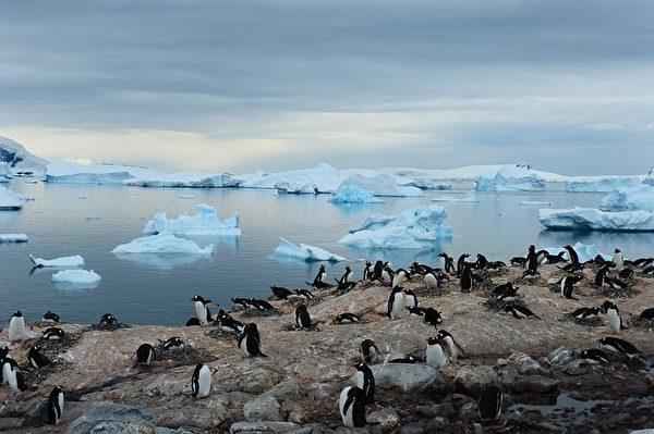 一提到南极,大家想到的是一望无际的冰川、呆萌的企鹅和美丽的极光。(rschendel/CC/Pixabay)
