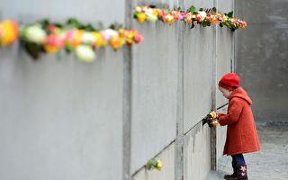 2014年11月9日,是柏林墙倒塌25周年的纪念日。图为一个小女孩正往残留的柏林墙插玫瑰。(JOHN MACDOUGALL/AFP/Getty Images)