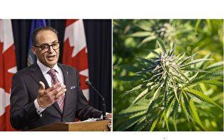 亞省財政廳長塞西11月10日拒絕了聯邦政府關於明年合法化的大麻稅收分享協議。