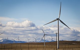 可再生能源产业 为亚省创造更多就业