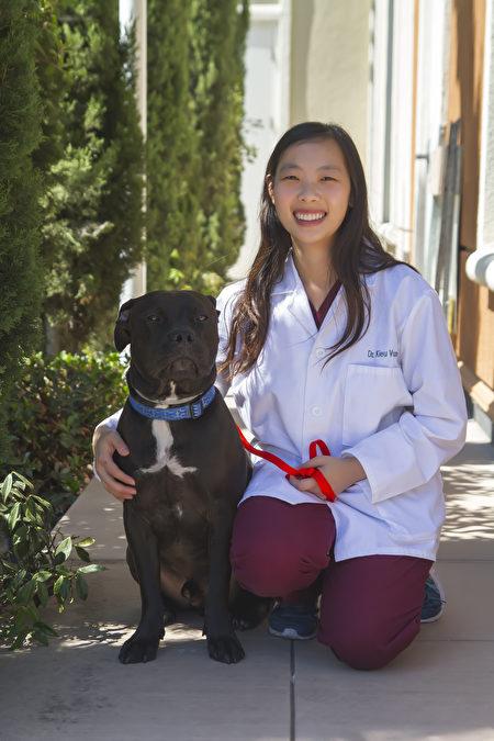 先进兽医中心的全科兽医师Dr. Vuong(王医师)。(湾区兽医先进兽医中心提供)