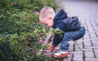 小男孩低著頭為螞蟻引路。示意圖。(pixabay)