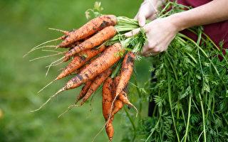根据庞德饮食原则吃当季食物,就要学习如何挑选当季食材。(Shutterstock)