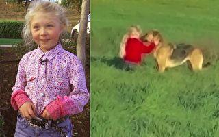 被NBC記者問及爲什麼狗狗願意到她身邊,小女孩的答案令人驚奇——心靈感應。(視頻截圖/大紀元合成)