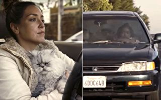 她打算499美元甩卖旧车 男友一个技巧竟让人出价15万
