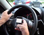 民调显示很多亚省司机故意违章驾车。(加通社)