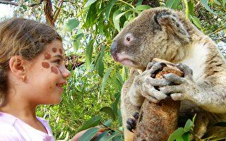 想和小动物们近距离接触就来悉尼野生动物园