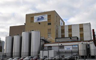 拉克塔利斯集团位于克朗市(Craon )工厂包装车间的干燥塔受到了沙门氏菌的污染。(DAMIEN MEYER/AFP/Getty Images)