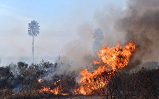 为何2017加州野火季如此猛烈?