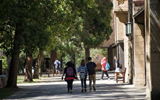 西澳大学哪个专业最难考?