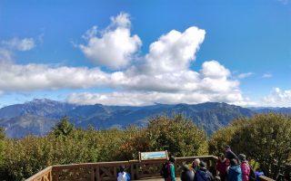「看見台灣阿里山、高山植物茶顏誌」特展