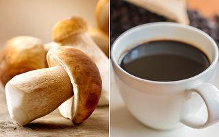 """""""蘑菇咖啡""""热 比咖啡营养 但有些人不能喝"""