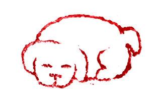 篆刻欣赏:戊戌年印章 祝朋友狗年兴旺