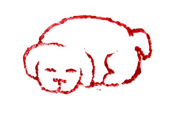 篆刻欣賞:戊戌年印章 祝朋友狗年興旺