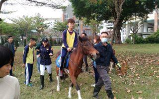 高市警關懷特校 學生騎馬好療癒
