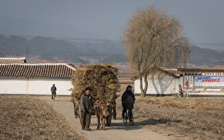 组图:法摄影师透过长镜头 呈现真实朝鲜