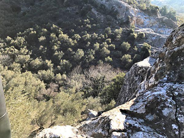 獨特的火山土壤,使得這裡能夠生產出世界上最好的橄欖油之一。 (圖:天豐國際提供)