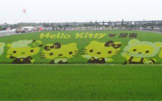 热博展农业实力 Hello Kitty彩稻美呆了!