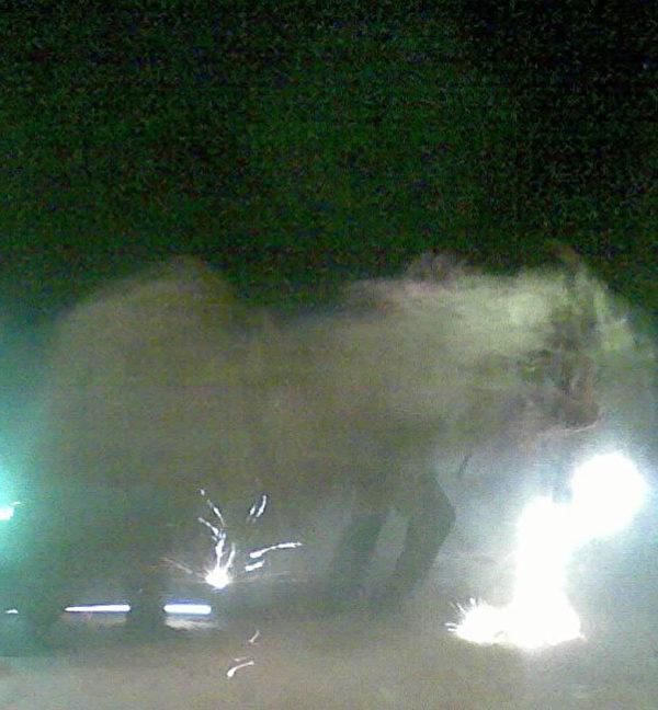 蔣煉嬌家鄉過元宵時的燒獅子活動。(蔣煉嬌提供,攝於2011年)