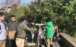 城市绿珍珠 鸟松湿地吸引国外旅客探访
