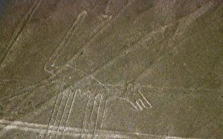 留下深深胎痕 秘鲁司机辗坏两千年纳斯卡线