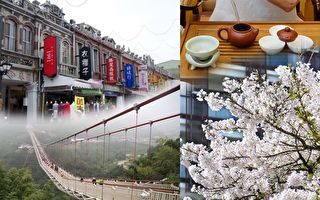 台湾阿里山吸引全球观光客 好茶 老街 都不敌一个美景