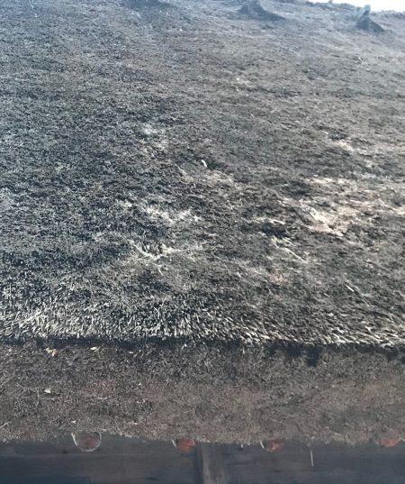 合掌村上的茅草有許多的細孔。