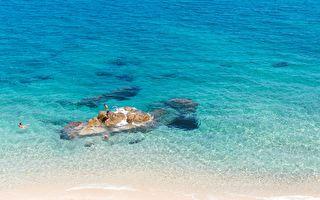 海灘上男孩跳入水中 不料卻跟四條鯊魚狹路相逢