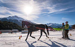 體驗用馬拖曳滑雪 獨特風情盡在莫里耶訥