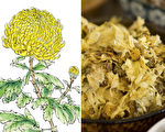 菊花是藥中聖賢 6種搭配養生袪病