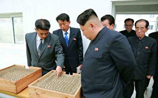 传朝鲜政府大楼出现反金正恩涂鸦