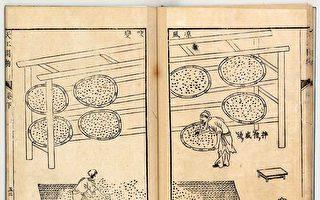 《天工开物》自然防腐红麹 化腐臭为神奇