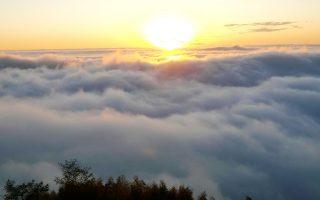 來石壁坐看山與雲  漫遊竹林森森