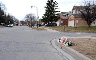 士嘉堡11歲華童被車撞亡 促市府行動