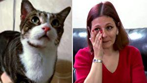 真实版《猫的报恩》 被救猫咪机警救女婴